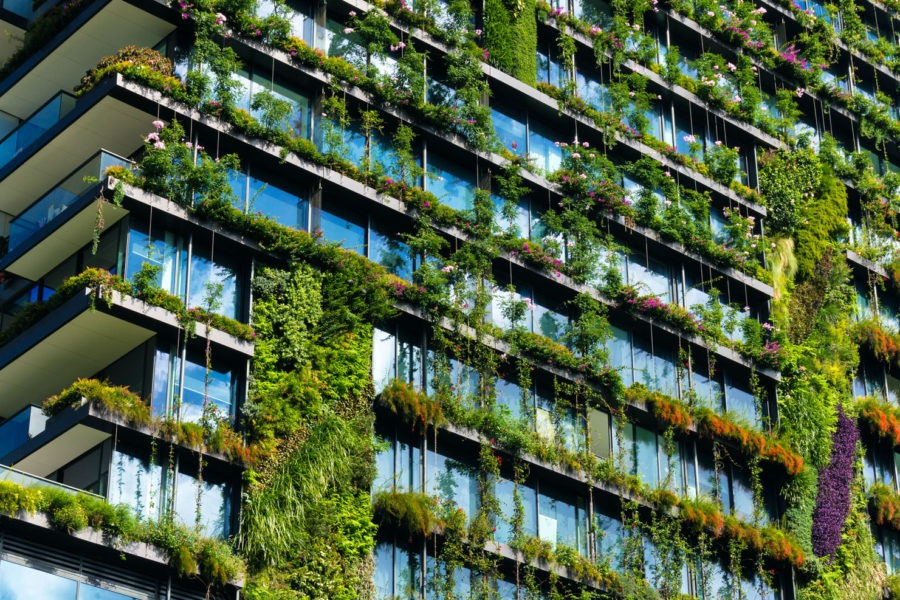 How to cut your website's carbon footprint